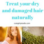 Hair mask to treat  dry and damaged hair naturally- DIY