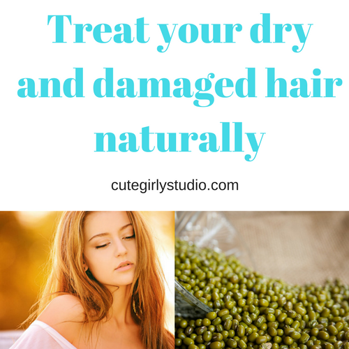 Hair mask to treat  dry and damaged hair naturally- DIY
